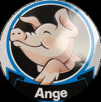 CHL - Ange